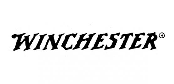 Winchester X22H2 45gr.
